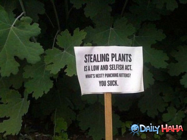 Stealing Plants funny picture
