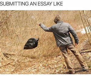 submitting an essay like funny picture