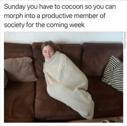 sundays are for cocoons