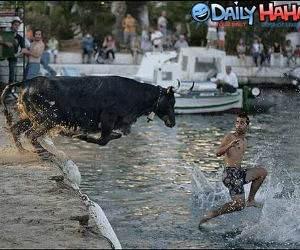 Bull Run Picture
