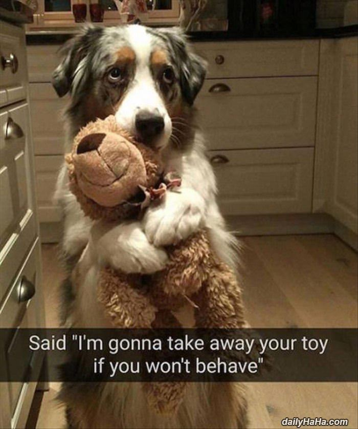 taking your toy away funny picture