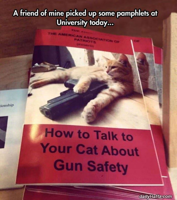 talk to your cat funny picture