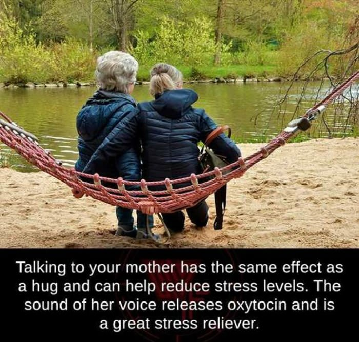 talking to your mother