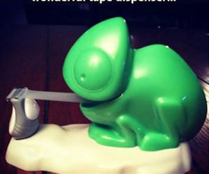 tape dispenser funny picture