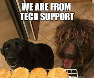 tech support team