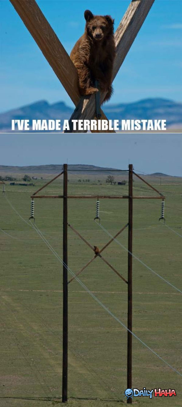Terrible Mistake funny picture