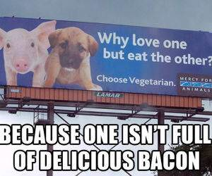 Bacon Love Thats Why funny picture