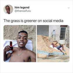 the grass on social media