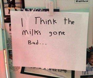 the milk has gone bad ... 2
