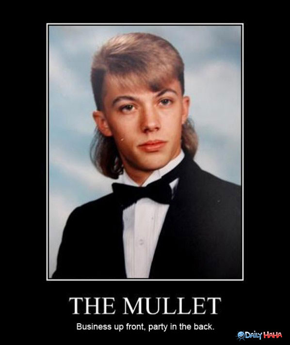 funny mullets 18 Quotes