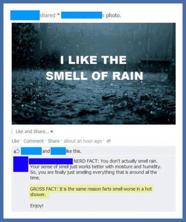 The Smell of Rain funny picture