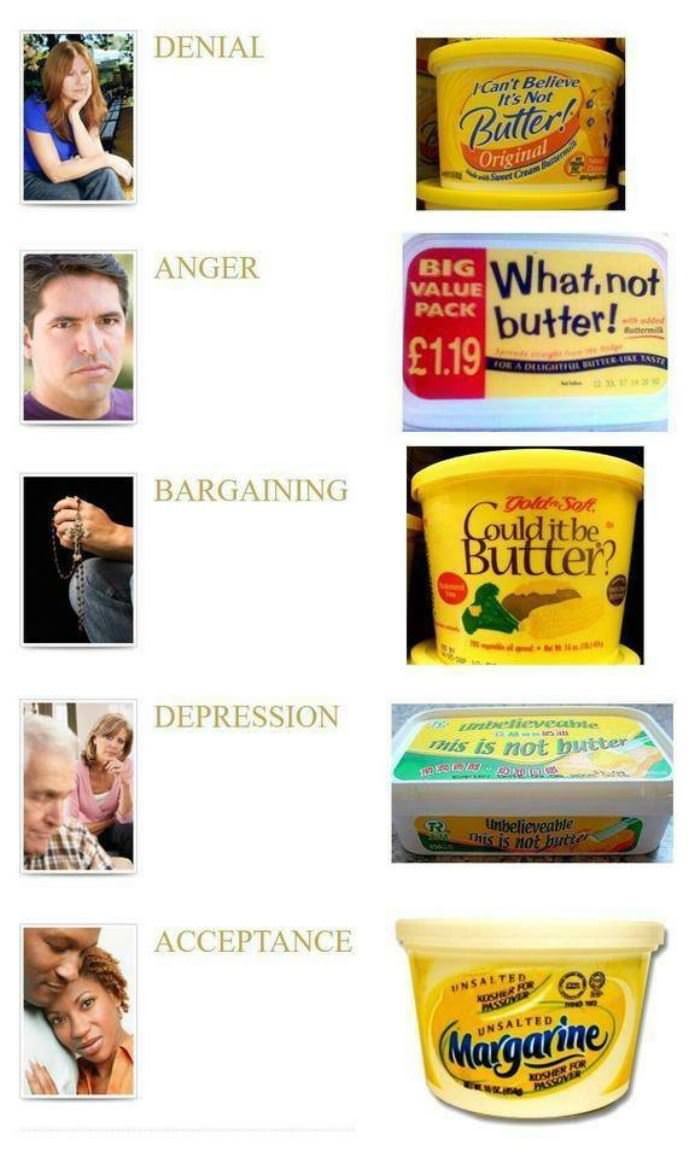 the 5 stages funny picture