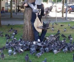 the bird man funny picture