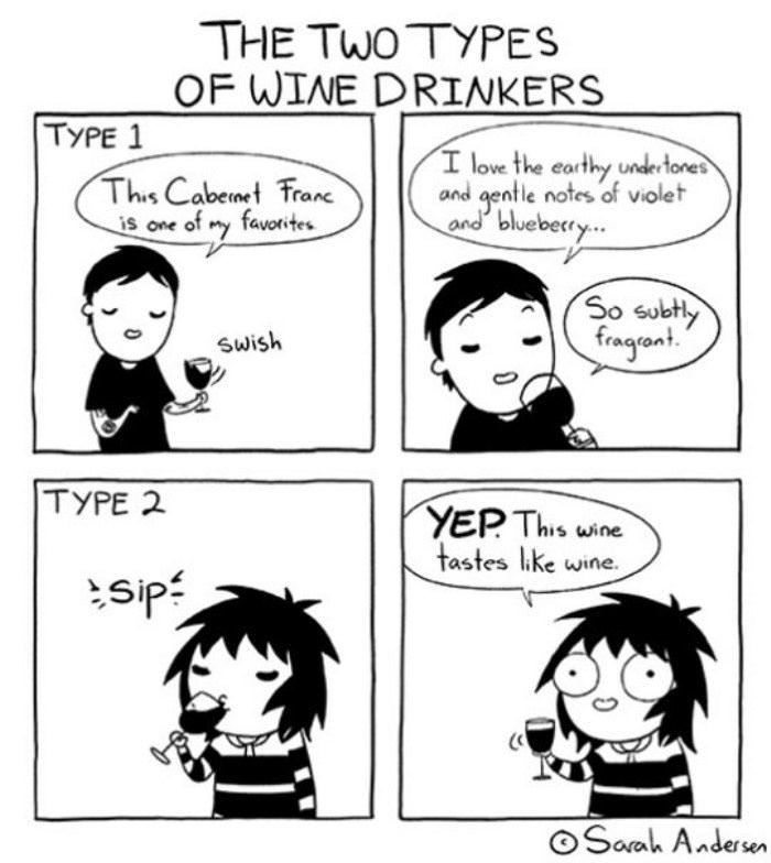 there are 2 types of wine drinkers funny picture