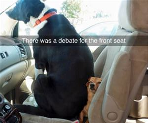 they had a debate funny picture