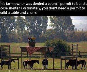 This Farm Owner funny picture