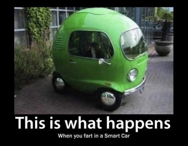What Farts Happen funny picture