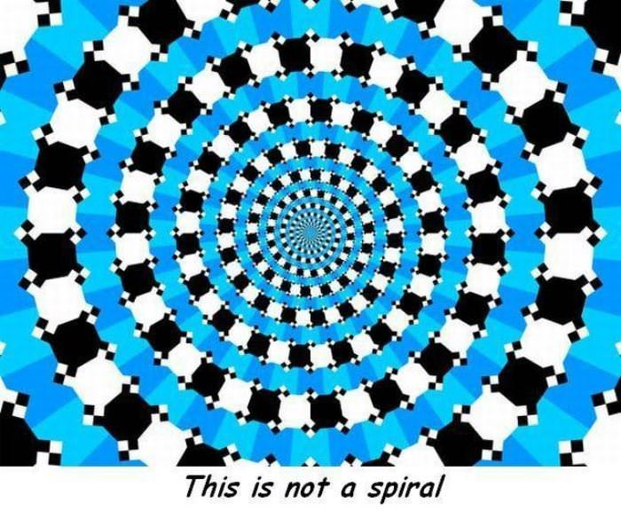 this is not a spiral funny picture
