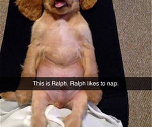 this is ralph funny picture