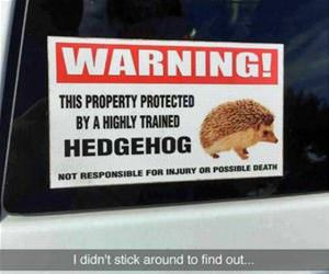 this property is protected funny picture