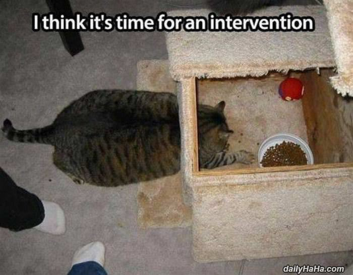 time for an intervention funny picture