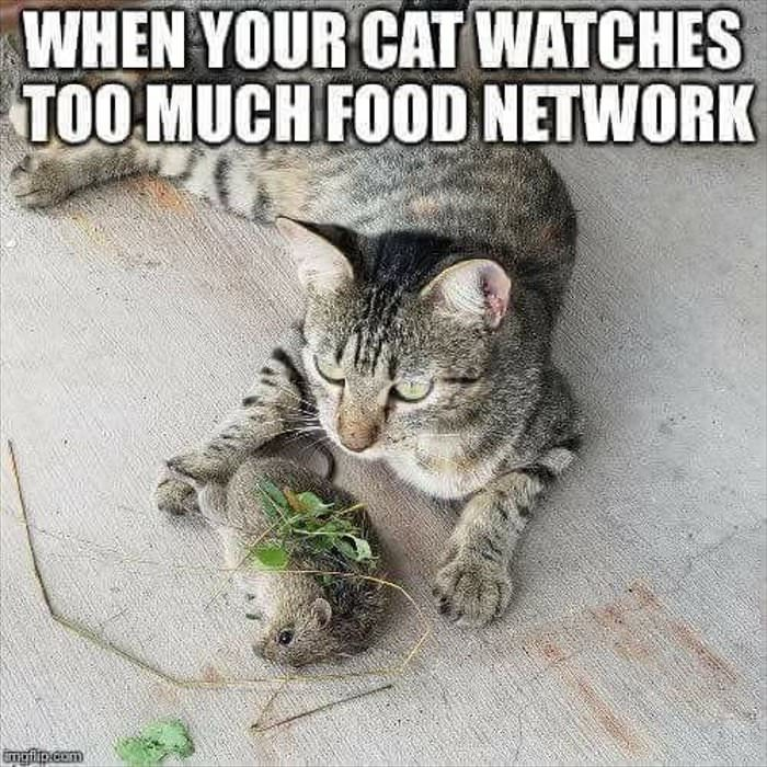 too much food network