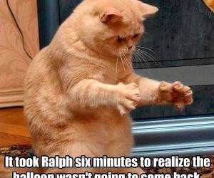 Poor Ralph is Slow funny picture
