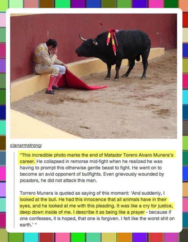 torero-alvaro.jpg