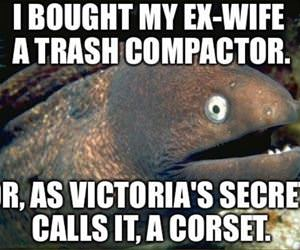 trash compactor funny picture