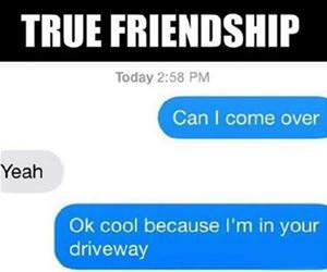 true friendship funny picture