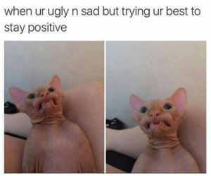 trying to stay positive funny picture