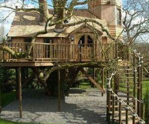 Awesome Tree House funny picture