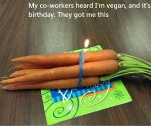 vegan birthday funny picture