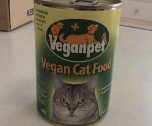 vegan cat food funny picture