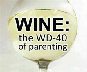 wd40 of parenting funny picture