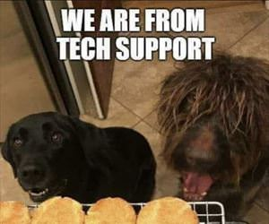 we are from tech support