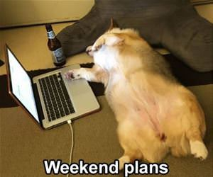 weekend plans funny picture