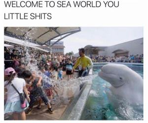 welcome to sea world funny picture