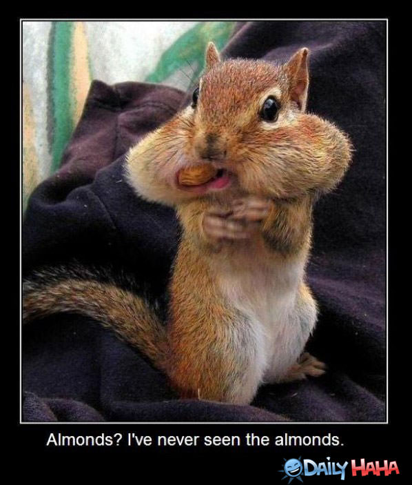 What Almonds