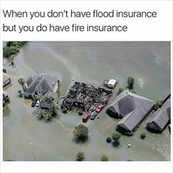 what kind of insurance do you have