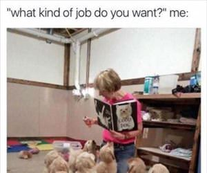 what kind of job do you want ... 2
