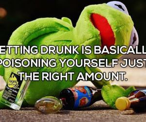 what getting drunk really is funny picture