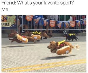 what is your favorite sport funny picture