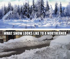 what snow looks like funny picture