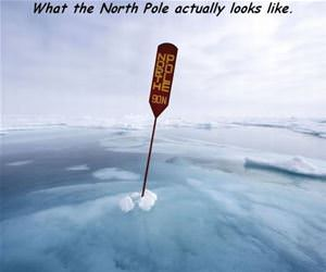 what the north pole looks like funny picture