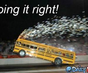 Wheelie Bus Ride Funny Picture