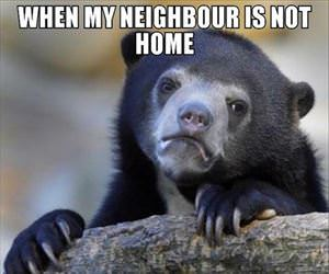 when my neighbor is not home ... 2