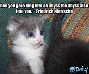 Gazing Abyss funny picture