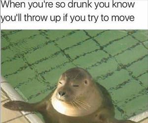 when you so drunk