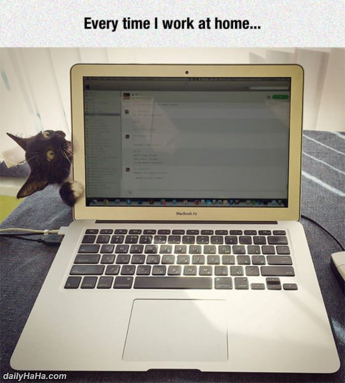 when i work at home funny picture